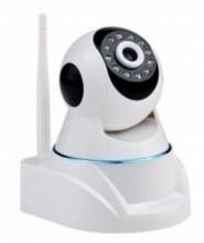 Camera IP hồng ngoại không dây 1 râu